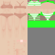 CustomSwimsuit24