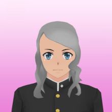 Hairstyle 25.png