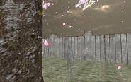 Le fantôme derrière cerisier