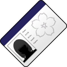 Fausse carte d'identité new.png