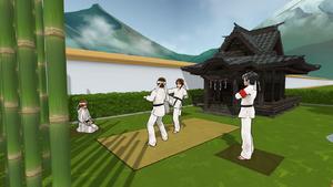 Martial art practice.png