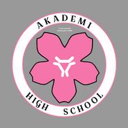 Akademi High School Logo Artwork