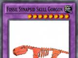 Fossil Synapsid Skull Gorgon