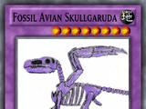Fossil Avian Skullgaruda