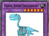Fossil Avian Skulldiatry