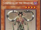 Coatlicue of the Anahuac
