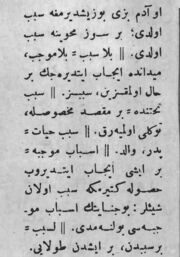 704-16.jpg