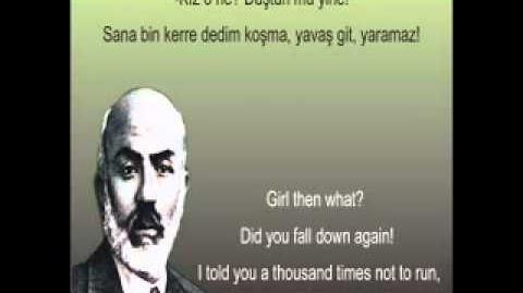 Hürriyet-_mehmet_akif_ersoy_-_safahat_-_yusuf_ziya_özkan-0
