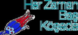 Bursa ulu şehir logosu 1.png