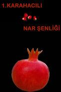 NAR AFS3 copy