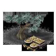 OliveTreeProduce.png
