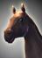 Unit horse big.png