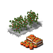 TomatoesProduce.png