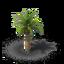 Tree date 3 crop.png