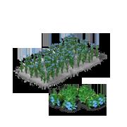 FlaxProduce.png