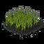Plant barley 3 crop.png