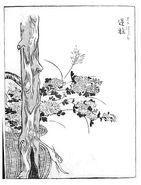 Sakabashira-sekien