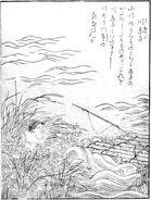 SekienKawa-akago