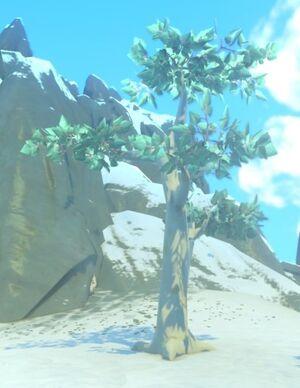 Aliora Tree