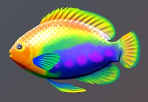 Lucky Rainbow Fish