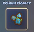 Celium Flower.png