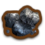 CoalIcon.png