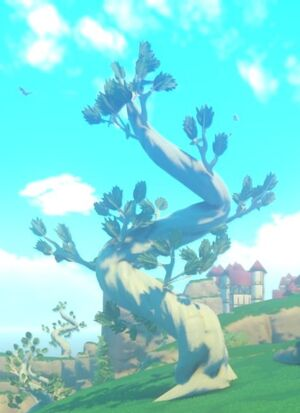 Sinosa Tree