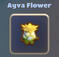 Ayva Flower.png