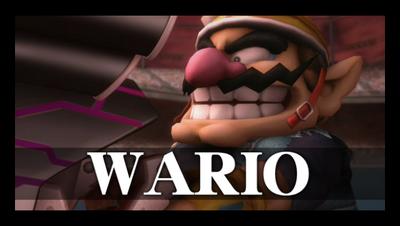 Wario's snapshot.