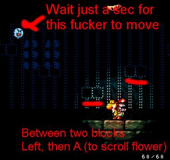 2-4 flower setup.png