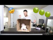 WHATS IN THE BOX CHALLENGE..