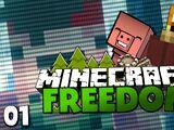 Minecraft Freedom
