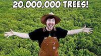 20 Million Trees.jpg