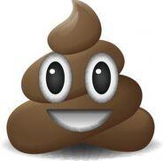 Poop-Emoji-300x294-1