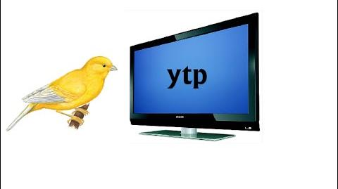 YTP_A_crazy_old_guy_forces_his_pet_canary_to_watch_cartoons