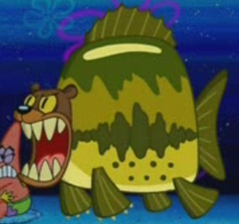 Sea Bear Youtube Poop Wiki Fandom Don't play the sea bear is a cold blooded mammal that lives in the ocean and is a fearsome warrior in the depths. sea bear youtube poop wiki fandom