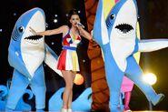 Katy Sharks
