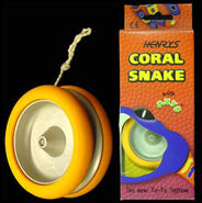 Coralsnake2
