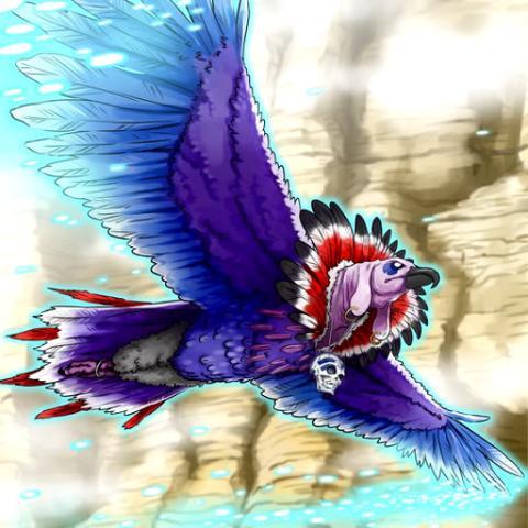 Condor de Brume