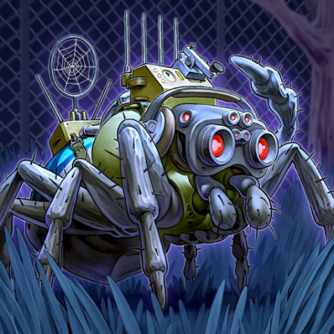 Araignée Espion