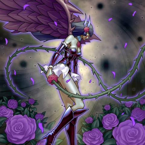 Ange Déchu des Roses