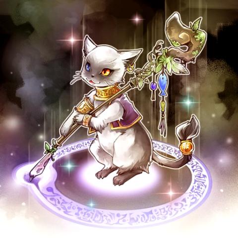Chat Magique