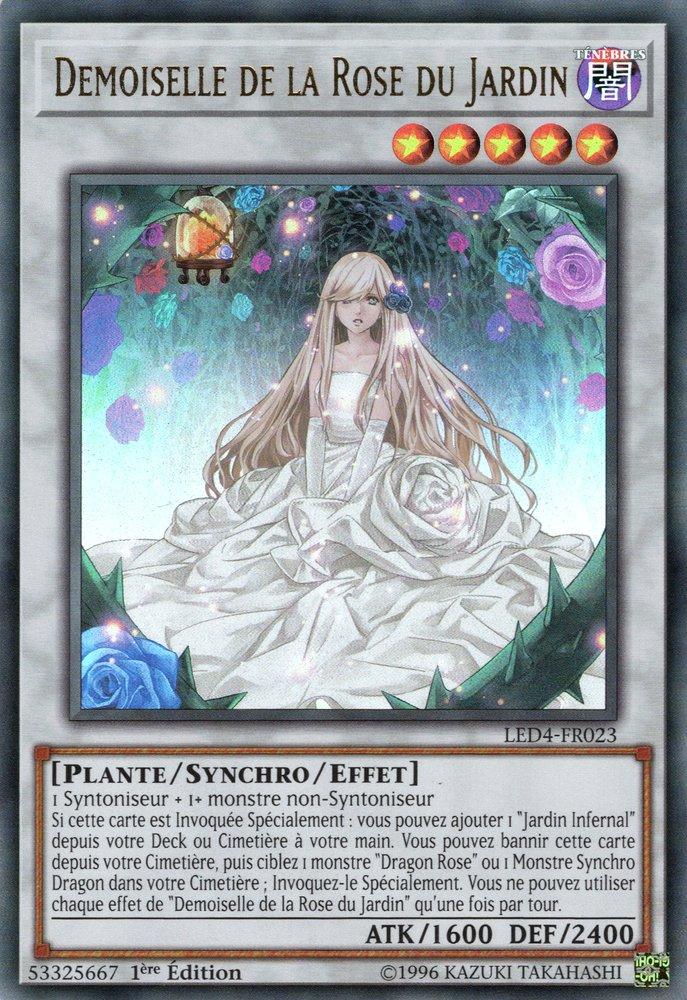 Demoiselle de la Rose du Jardin