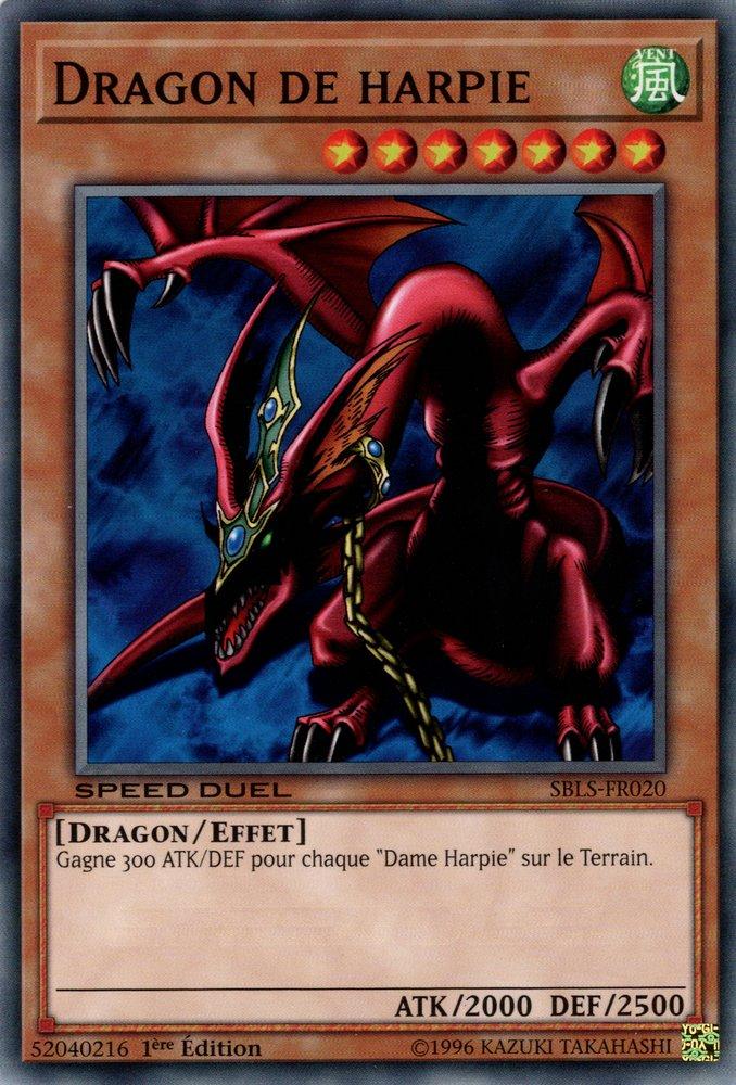 Dragon de harpie