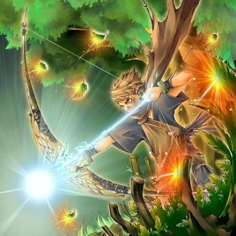 L'Archer Obscur de la Forêt
