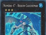 Numéro 47 : Requin Cauchemar