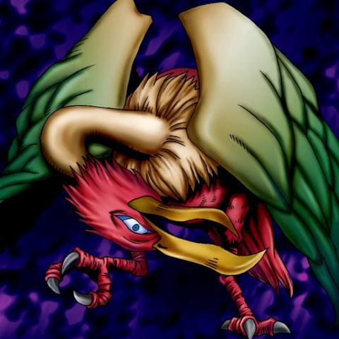Reine Oiseau