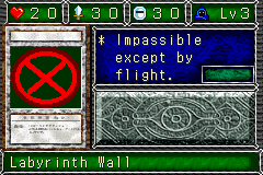 LabyrinthWall-DDM-EN-VG.png
