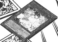 AshBlossomJoyousSpring-JP-Manga-OS.png