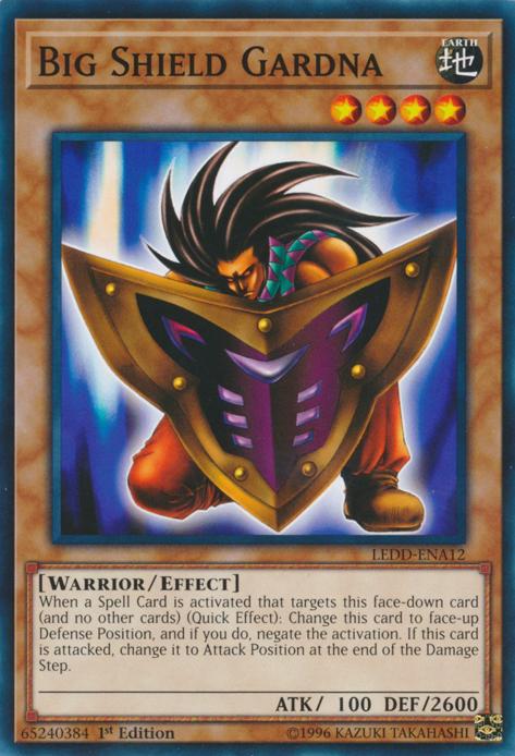 Big Shield Gardna